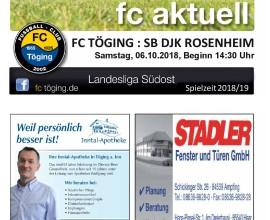 Ausgabe 7 Saison 2018-19 Titelblatt